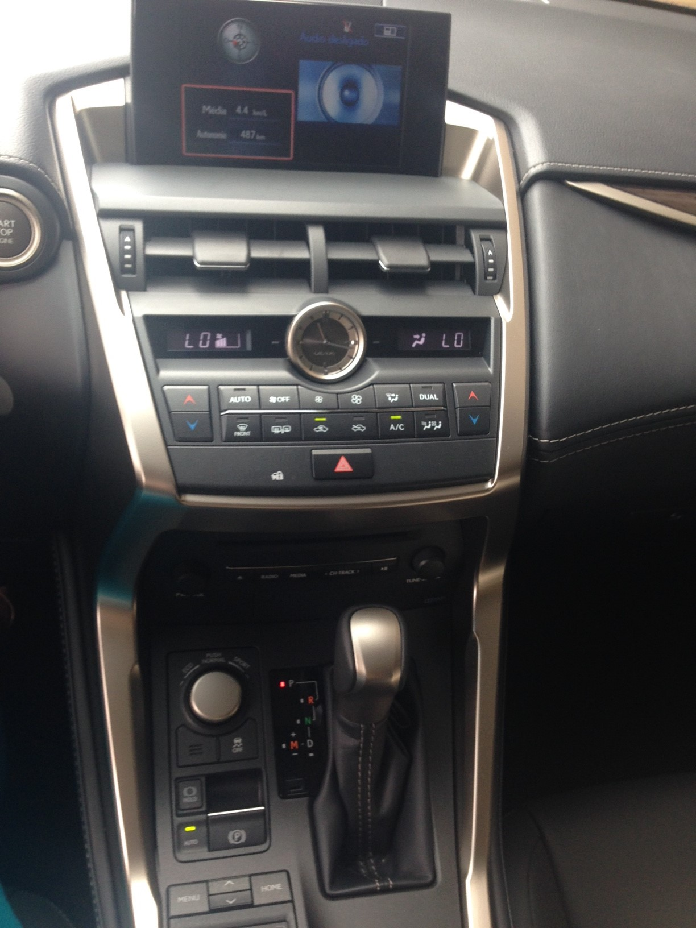 Lexus painel